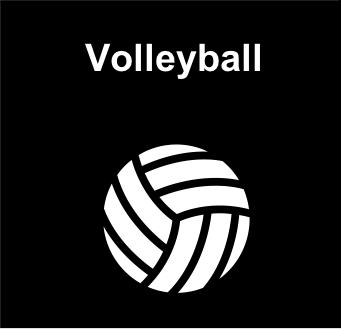 files/Hauptverein/Pictogramme/Volleyball.png